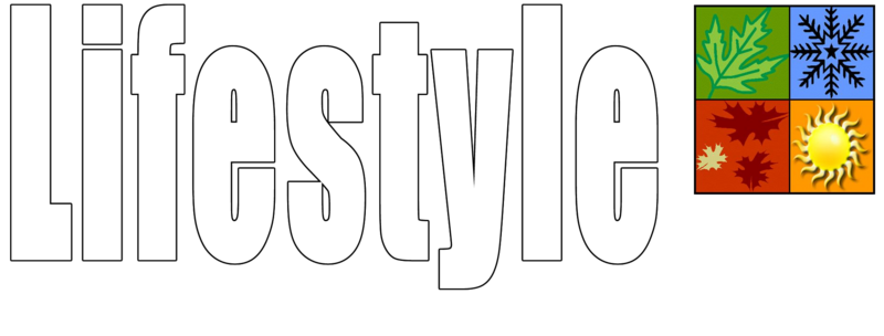Garage Door Screens Faqs About Lifestyle Screens Garage